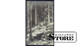 Коллекционная открытка Лес