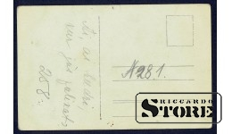 Коллекционная открытка Берёзовая роща