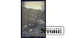 Старинная итальянская открытка Пастух и Овцы