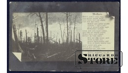 Коллекционная открытка Старый лес
