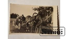 Лошадь с телегой. Довоенная Латвия