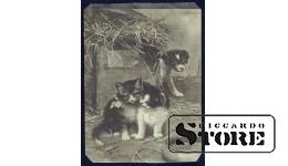 Старинная открытка с днём рождения женщине Котята и хитрый щенок