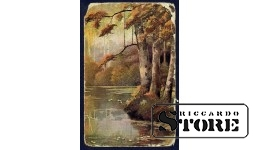 Коллекционная открытка времён Ульманиса Берёзы у воды