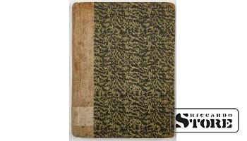 Книга, Kastalavots , автор Viktors Eglitis . 1924 год на Латышском языке.