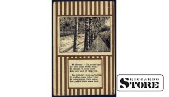 Старинная открытка  Берёзы у дороги